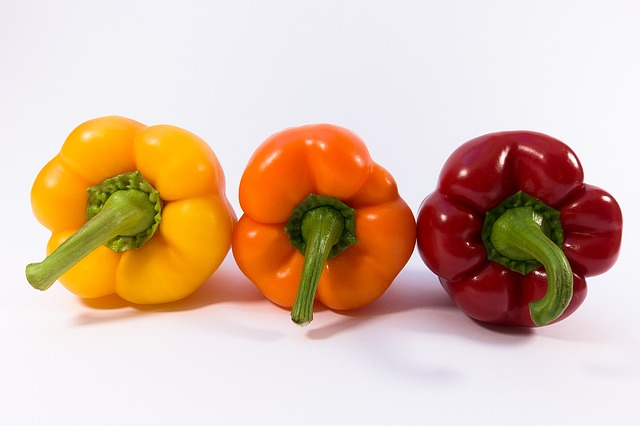 gojenje paprike